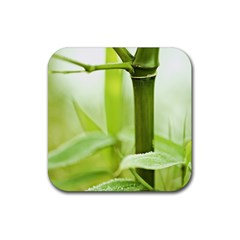 Bamboo Drink Coaster (square) by Siebenhuehner