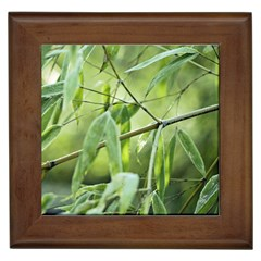 Bamboo Framed Ceramic Tile
