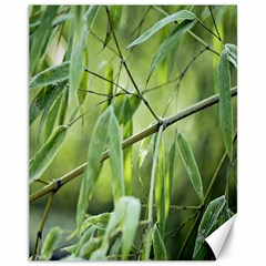 Bamboo Canvas 11  X 14  (unframed)