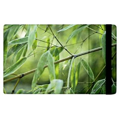 Bamboo Apple Ipad 3/4 Flip Case by Siebenhuehner