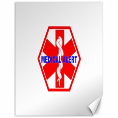 Medical Alert Health Identification Sign Canvas 12  X 16  (unframed) by youshidesign