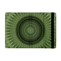 Mandala Apple Ipad Mini Flip Case by Siebenhuehner