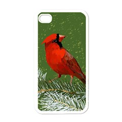 Cardinal Apple Iphone 4 Case (white)