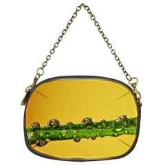 Drops Chain Purse (one Side)
