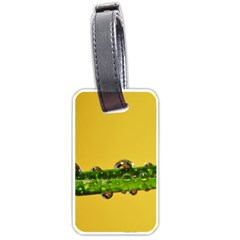 Drops Luggage Tag (one Side) by Siebenhuehner
