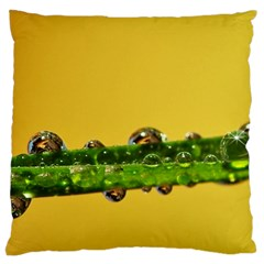 Drops Large Cushion Case (two Sided)  by Siebenhuehner