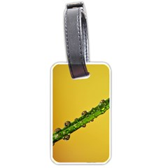 Drops Luggage Tag (two Sides) by Siebenhuehner