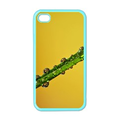 Drops Apple Iphone 4 Case (color) by Siebenhuehner