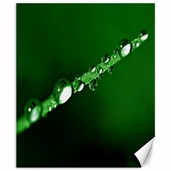 Drops Canvas 8  X 10  (unframed) by Siebenhuehner