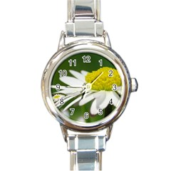 Daisy With Drops Round Italian Charm Watch by Siebenhuehner