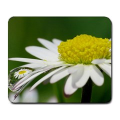 Daisy With Drops Large Mouse Pad (rectangle)