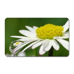 Daisy With Drops Magnet (rectangular) by Siebenhuehner