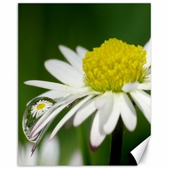 Daisy With Drops Canvas 16  X 20  (unframed) by Siebenhuehner