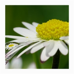 Daisy With Drops Glasses Cloth (medium) by Siebenhuehner
