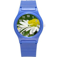 Daisy With Drops Plastic Sport Watch (small) by Siebenhuehner