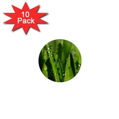 Grass Drops 1  Mini Button Magnet (10 Pack) by Siebenhuehner