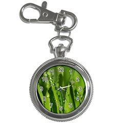 Grass Drops Key Chain & Watch by Siebenhuehner