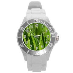 Grass Drops Plastic Sport Watch (large) by Siebenhuehner