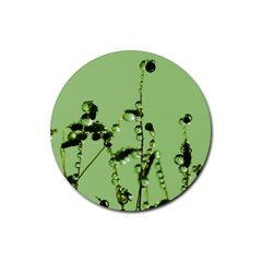 Mint Drops  Drink Coasters 4 Pack (round) by Siebenhuehner