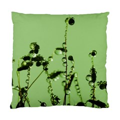 Mint Drops  Cushion Case (single Sided)  by Siebenhuehner