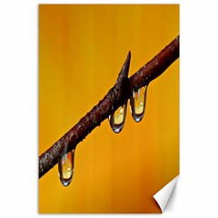 Tree Drops  Canvas 24  X 36  (unframed) by Siebenhuehner