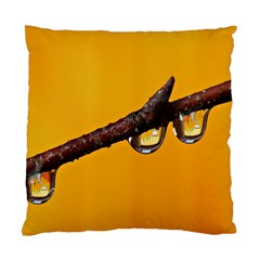Tree Drops  Cushion Case (single Sided)  by Siebenhuehner