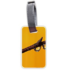 Tree Drops  Luggage Tag (one Side) by Siebenhuehner