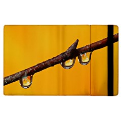 Tree Drops  Apple Ipad 2 Flip Case by Siebenhuehner