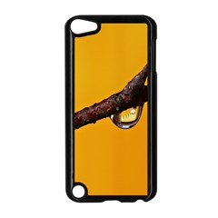 Tree Drops  Apple Ipod Touch 5 Case (black) by Siebenhuehner
