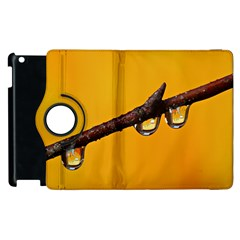 Tree Drops  Apple Ipad 3/4 Flip 360 Case by Siebenhuehner