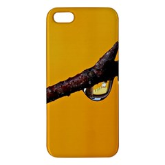Tree Drops  Iphone 5s Premium Hardshell Case by Siebenhuehner