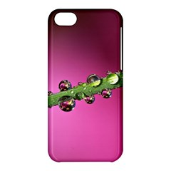 Drops Apple Iphone 5c Hardshell Case by Siebenhuehner