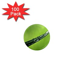 Green Drops 1  Mini Button Magnet (100 Pack) by Siebenhuehner