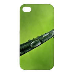 Green Drops Apple Iphone 4/4s Hardshell Case by Siebenhuehner