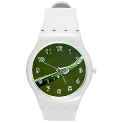 Grass Drops Plastic Sport Watch (medium) by Siebenhuehner