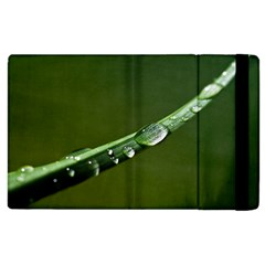 Grass Drops Apple Ipad 3/4 Flip Case by Siebenhuehner