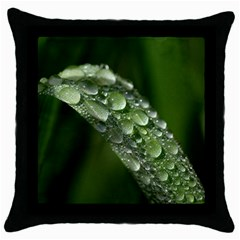 Grass Drops Black Throw Pillow Case by Siebenhuehner