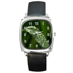 Grass Drops Square Leather Watch by Siebenhuehner