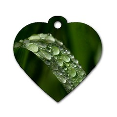 Grass Drops Dog Tag Heart (one Sided)