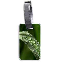 Grass Drops Luggage Tag (one Side) by Siebenhuehner