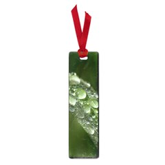 Grass Drops Small Bookmark by Siebenhuehner