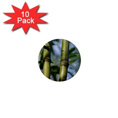 Bamboo 1  Mini Button Magnet (10 Pack)