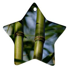 Bamboo Star Ornament (two Sides) by Siebenhuehner