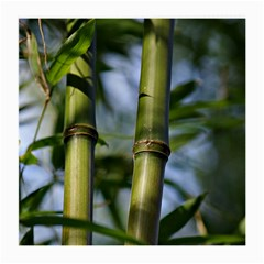 Bamboo Glasses Cloth (medium, Two Sided) by Siebenhuehner