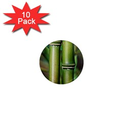 Bamboo 1  Mini Button Magnet (10 Pack) by Siebenhuehner