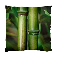 Bamboo Cushion Case (two Sided)  by Siebenhuehner