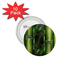 Bamboo 1 75  Button (10 Pack) by Siebenhuehner