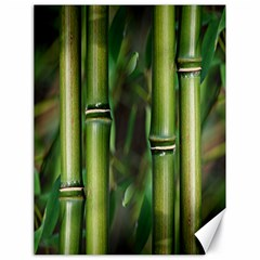 Bamboo Canvas 18  X 24  (unframed) by Siebenhuehner