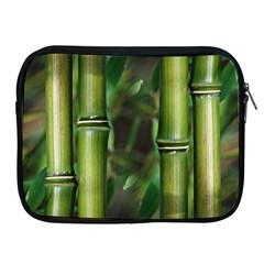 Bamboo Apple Ipad Zippered Sleeve