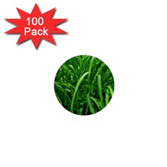 Grass 1  Mini Button (100 Pack) by Siebenhuehner